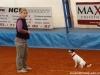 agi-intenzivka-01-02-2012-004