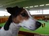 agi-louny-01-2012-002