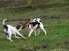 Petrin-s-Aimy-Beebou-a-Spikem-29.12.2012-002