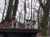 Petrin-s-Aimy-Beebou-a-Spikem-29.12.2012-013