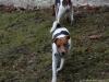 Petrin-s-Aimy-Beebou-a-Spikem-29.12.2012-014