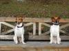 Petrin-s-Aimy-Beebou-a-Spikem-29.12.2012-023