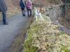 Pruhonicky-park-s-Aimy-a-Archiem-30.12.2012-007