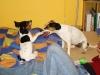 Albi-u-nas-06-2009-040