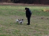 archie-pruhhonicky-park-21-12-2013-017