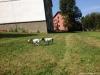 Aimy-B-vrh-navsteva-24.-25.8.2013-115-