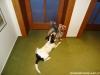 chico-01-2012-001