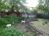 Chyska-a-MiniCoudci-25.5.2013-031