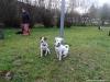 Intenzivka-Besiny-1.-3.11.2013-042-