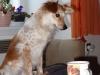 morava-01-2012-005