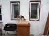 morava-01-2012-006