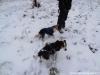 morava-01-2012-008