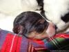 porod-20-11-2012-024