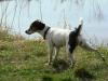 pribram-04-2011-002