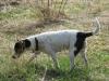 pribram-04-2011-011
