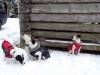 KarlovaStudanka2016020