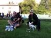 03-WaterDogs-09-2012-12