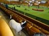 agi-kladno-01-2012-002