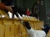 agi-louny-01-2012-004