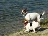 aimy-hlucinske-jezero-2010-006