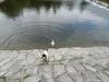 Aimy-B-vrh-navsteva-24.-25.8.2013-144-