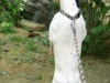 22-zoo-surikaty-1