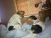 angie-u-nas-07-2011-005