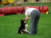 kennel-cup-2010-058