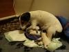 porod-20-11-2012-012