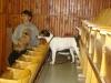 louny-2011-022