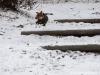 roznov-01-2012-003