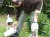 sraz-prtousku-v-chysce-10-2009-088