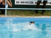 03-WaterDogs-09-2012-4