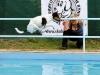 03-WaterDogs-09-2012-5