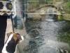 zoo-praha-26-3-007